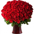 send 100 stems roses to korea