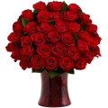 send 50 stems roses to korea